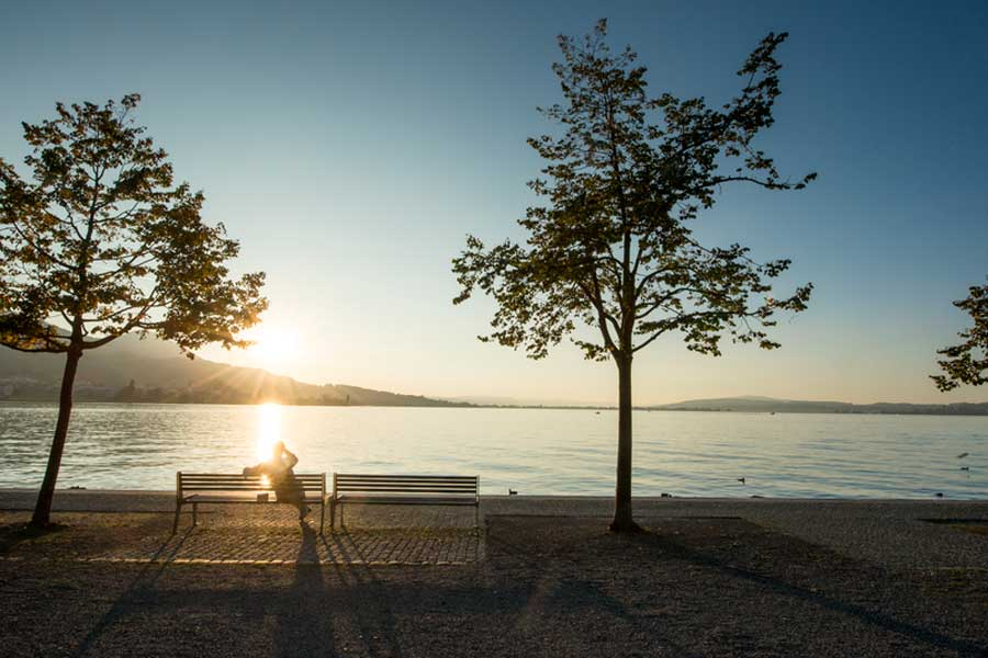 Jogging and walking on Lake Zurich